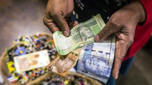 'White monopoly capital': Anti-white South African radicals scorn massive donations that could help black businesses