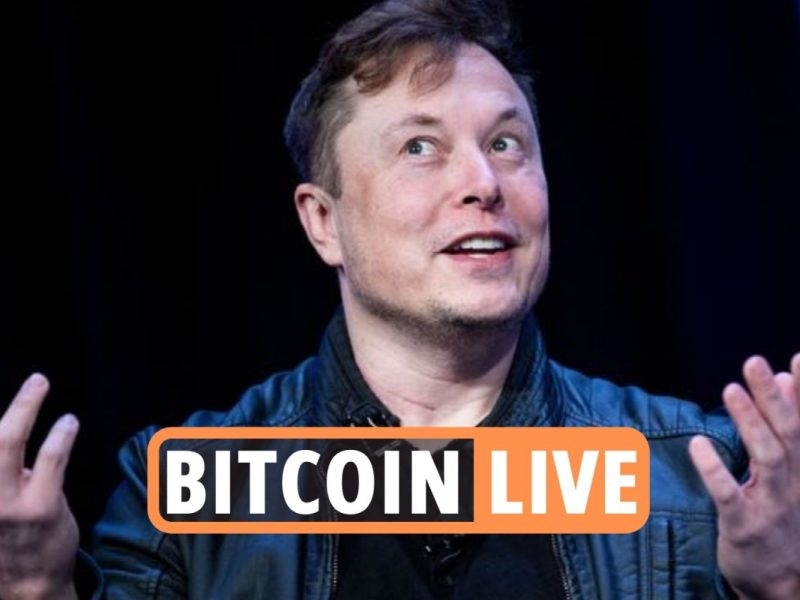 Bitcoin newest – Elon Musk scammers stole greater than $2million in crypto hacks as regulator experiences 'big spike'
