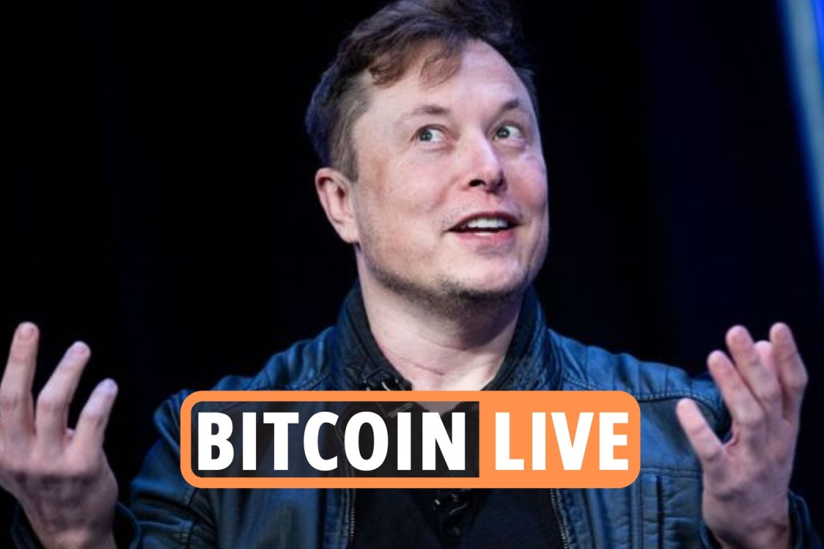 Bitcoin latest – Elon Musk scammers stole more than $2million in crypto hacks as regulator reports 'huge spike'