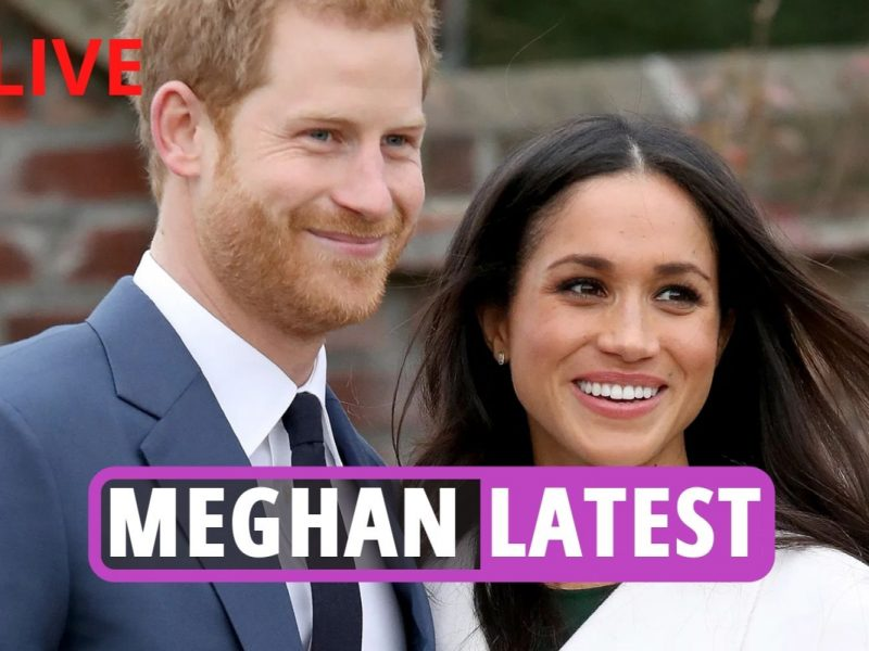 Meghan Markle – 'Formidable' Duchess secretly plotted to marry Prince Harry to additional her profession, skilled suggests